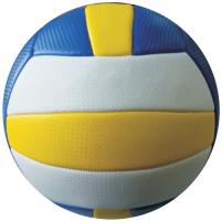 VBFM Volleyball